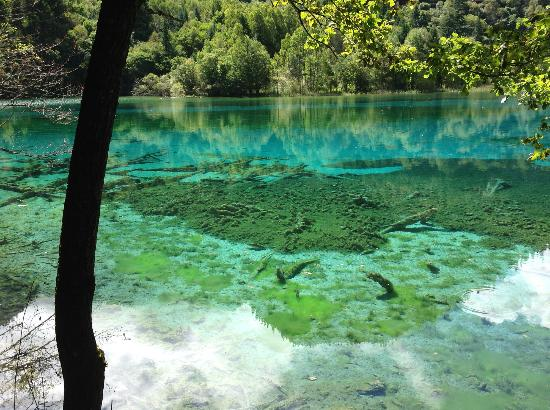 China Connection Tours: Jui Zhaigou Nat'l Park - Peacock Lake or 5 Colored Lake
