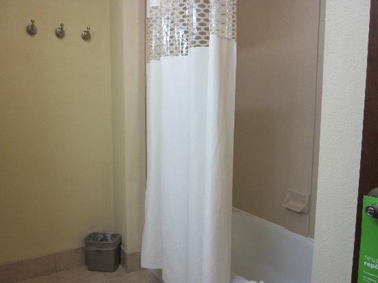Hampton Inn Chattanooga-North/Ooltewah: Tub/Shower