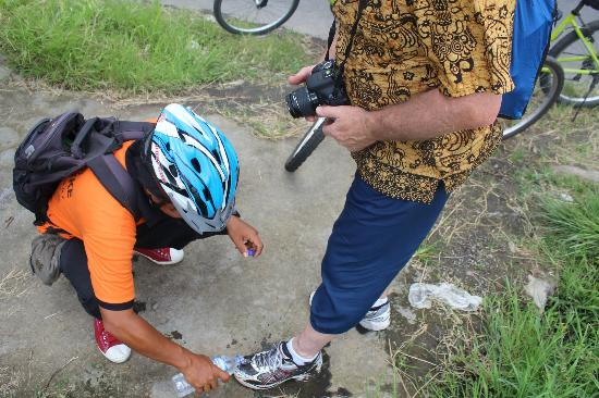 Halo Bike Cycling Tour: oops - stuck in a mud puddle...
