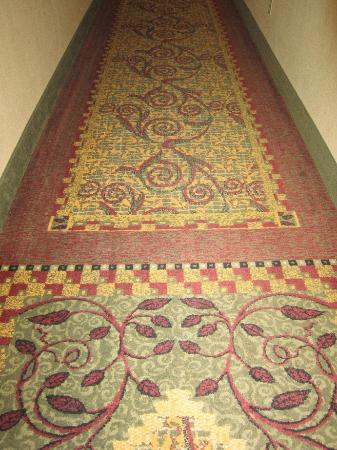 Hampton Inn & Suites Scottsbluff Conference Center: hallway rug