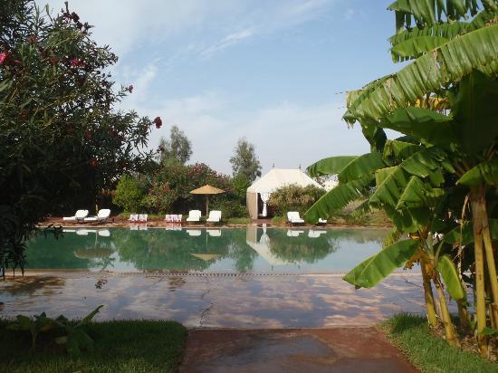 Les Jardins d'Issil: pool