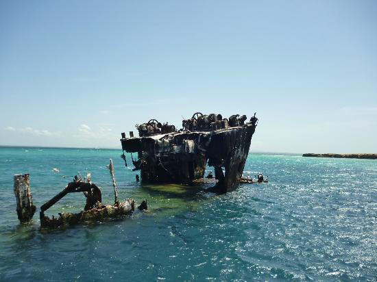 Isla Cubagua: El ferry hundido, muy adrenalínica experiencia para snorkel