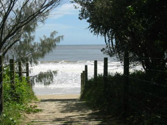 Beachcomber on the Spit: Mooloolaba surf