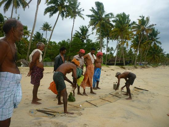 Marari Villas: Local Fishermen further down the beach