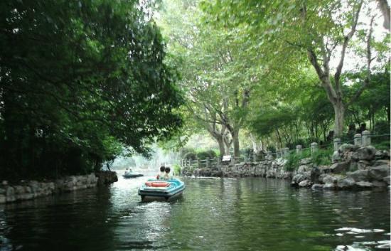 Lu Xun Memorial and Gravesite: 電動ボート