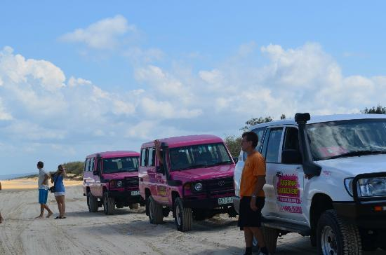 Fraser Island Tag Along Tour Tripadvisor