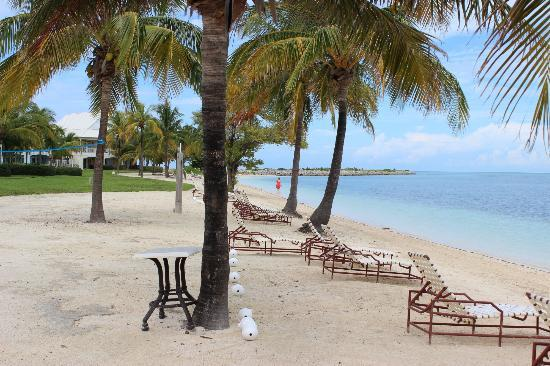 Old Bahama Bay: beach