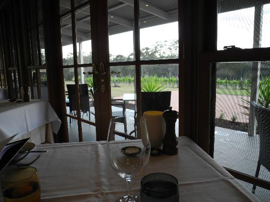 Restaurant Botanica: View of vineyards from the restaurant