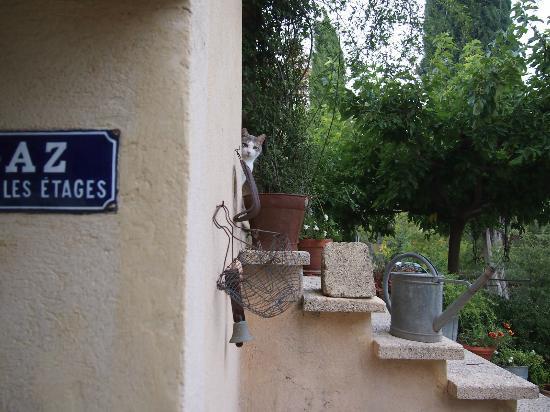 La Charlotte Aix en Provence: Cats are our friends