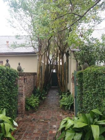 Audubon Cottages: Entrance gate at the end, thru the tree lane to the cottages courtyard - Audubon's 1st on the ri