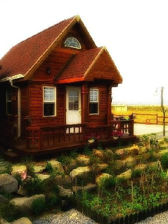 Sunrise Cabins