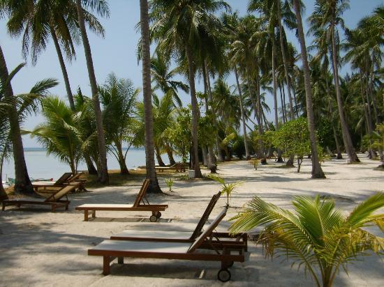 Kura Kura Resort: Weg durch die Anlage