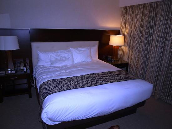 DoubleTree by Hilton - Washington DC - Crystal City: Room at Doubletree