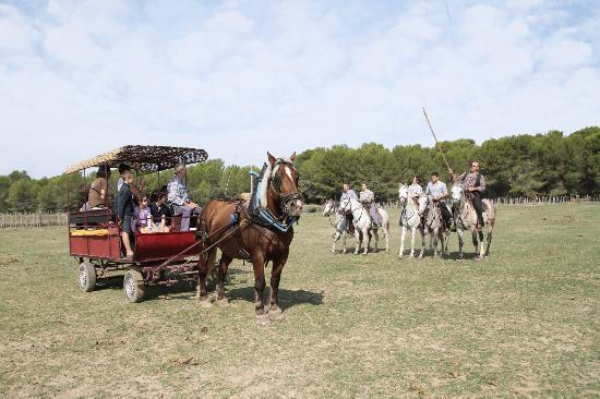 Castries, Francia: Salut des gardians