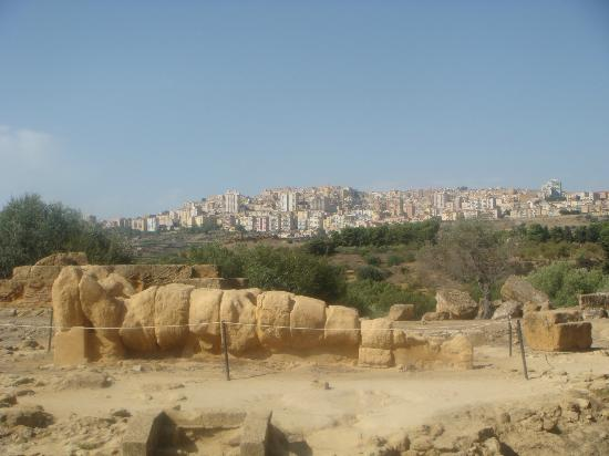 Sicily Travelnet Private Tours: Olympeion field and Agrigento