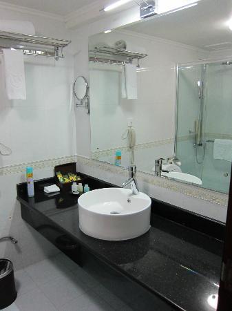 Hotel Tajikistan: bathroom