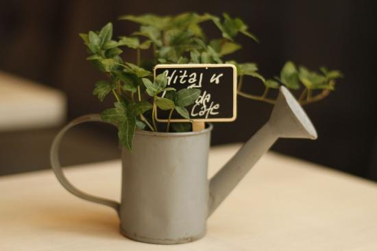 Lavenda Cafe & Galeria: mini konewka na każdym stole
