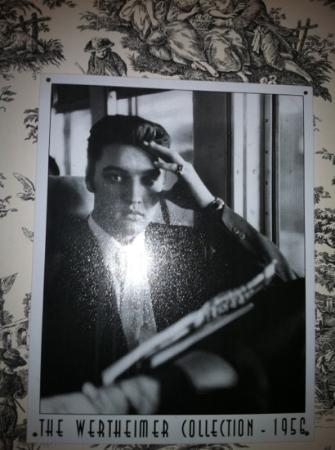 Carriage Lane Inn: a photo of Elvis, watching over me !