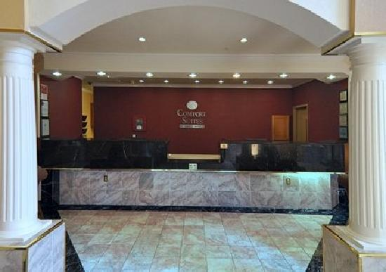 Comfort Suites: Hotel Lobby