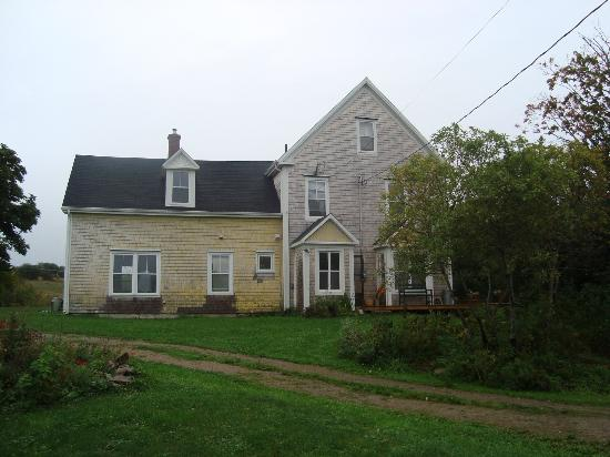 Laurel's Bed and Breakfast: witsend farm bed and breakfast