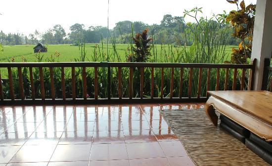 Tegal Sari: the view to monkey forest from the downstairs balcony