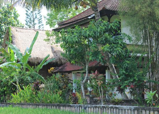 Tegal Sari: duplex room from monkey forest side