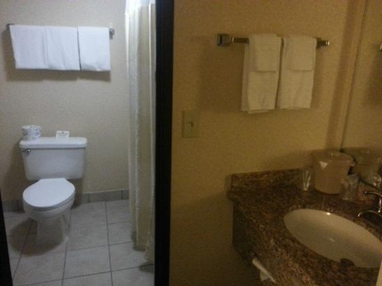 Fairfield Inn & Suites Phoenix North : bath