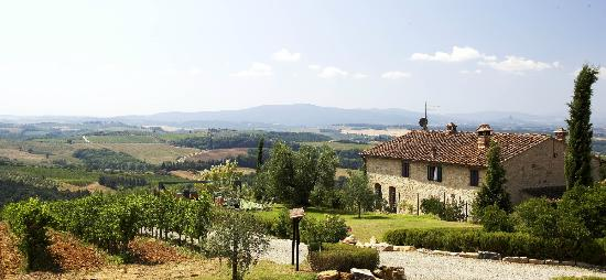 Tenuta Casanova: Our farm