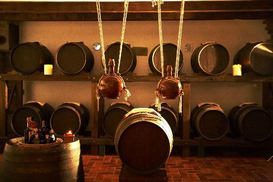 Castellina In Chianti, Italia: The cellar