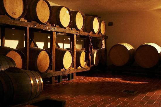 Tenuta Casanova: Cellar
