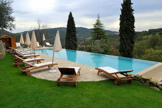 Borgo di Carpiano: La piscina a sfioro