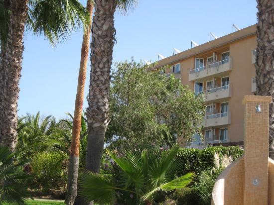 Garbi Cala Millor: Hotel