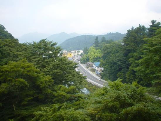 Nikko Kanaya Hotel: View