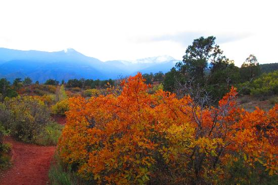 Lots Of Fall Colors Picture Of Garden Of The Gods Colorado Springs Tripadvisor