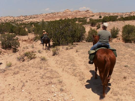 Equine Escapes- Private Horseback Riding Tours