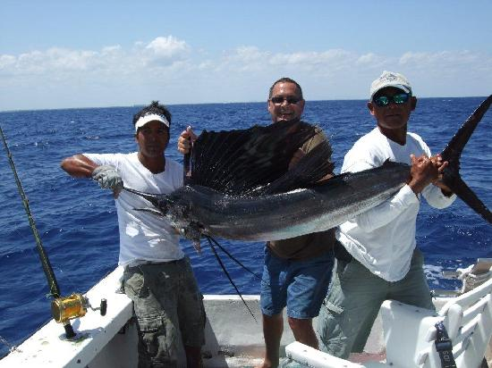 Sailfish picture of 3 hermanos cozumel fishing cozumel for Cozumel fishing charters
