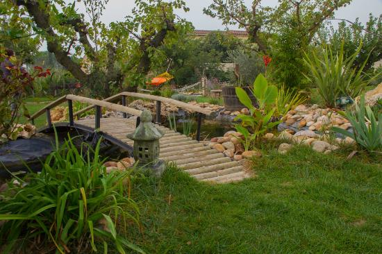 Les Chambres D'Hotes de Jade : Garden
