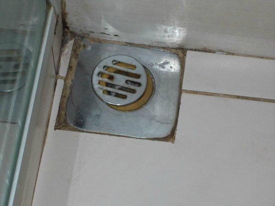 Green Anka Hotel:                                                       Shower Drain