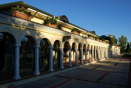 Terme Francescane Village: Ingresso delle terme