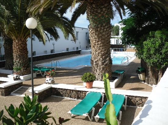 Apartamentos Guacimeta Lanzarote: Palm Tree and Pool