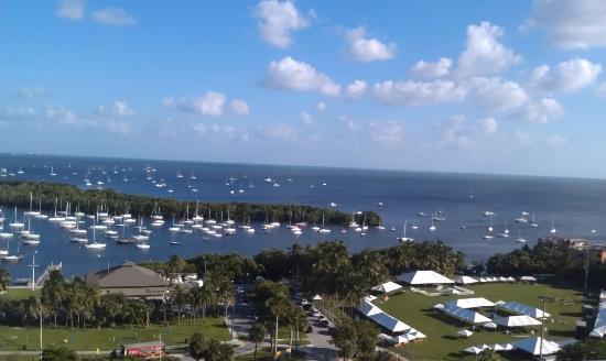 Sonesta Coconut Grove Miami: Room View