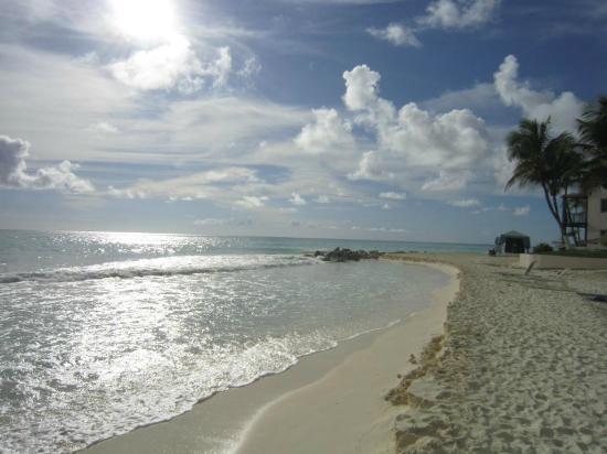 Divi Aruba All Inclusive: Beach the Divi is on