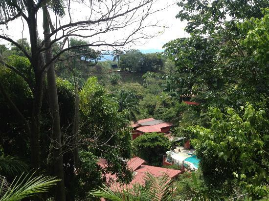 Condotel Las Cascadas: Our view