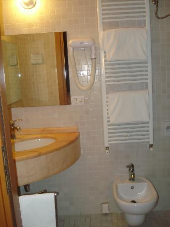 Hotel Italia: Non è la foto dell'intero bagno, ma credo che comunque renda l'idea.