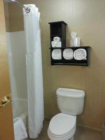 Holiday Inn Express Hotel & Suites : Bathroom/Shower/Towels