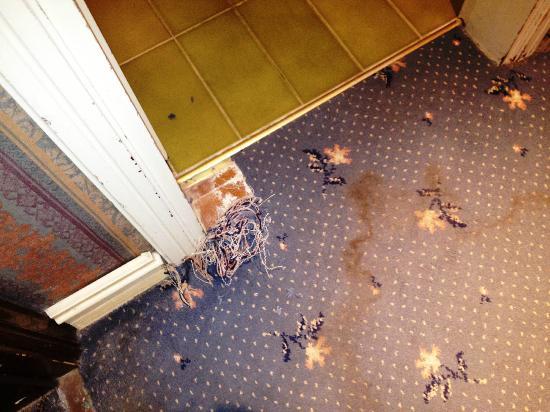 Boscolo Hotel Bellini Venice Reviews