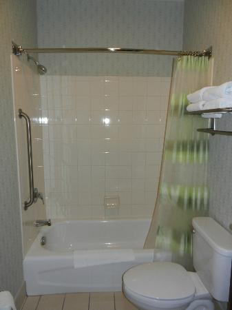 SpringHill Suites by Marriott Frankenmuth: bathroom