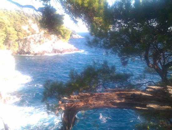 Dubrovnik-Neretva County, Croatia: The wild side of the island