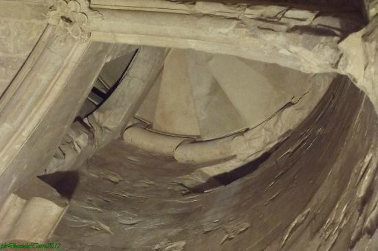 Volto picture of castel del monte andria tripadvisor - Scale a chiocciola bari ...