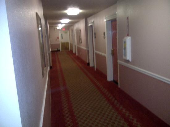 Comfort Inn & Suites: corridoio